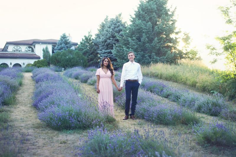 lavender field engagement; lavender farm photos, engagement photographer brampton, photographer for weddings brampton, photographer for weddings mississauga, best wedding photographer brampton